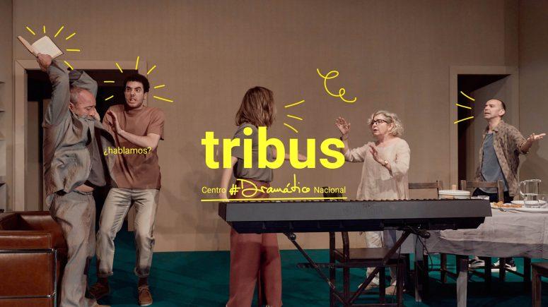 TRIBUS_169_2-scaled